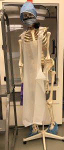 skeleton with proper safety gear
